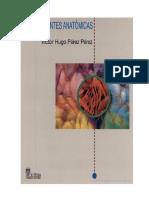 Atlas Segmentos Arteriales