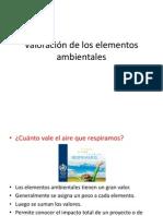 Valoración de los elementos ambientales (compatible)