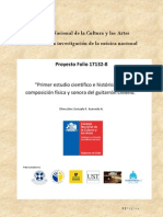 Ensayo17132CNCA_Sobre_El_Guitarrón