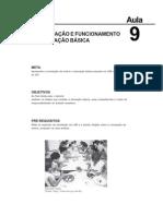Estrutura e Funcionamento Do Ensino Aula 9