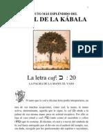 La letra caf, LA PALMA DE LA MANO, EL VASO. El fruto más e…
