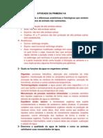 ATIVIDADE DA PRIMEIRA VA-NUTIÇAO (1)