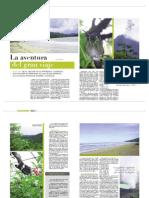 report_luna_de_miel
