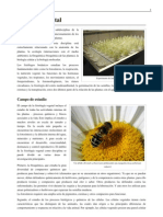 Index.pdf Fisiologia Vegetal