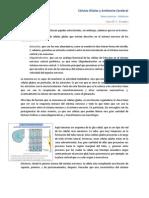 Clase N_ 3 - Neurociencias - Prueba I.docx