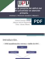 Estrategias de pesquisa del déficit del desarrollo psicomotor