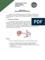 Practica No 4 Reconocimiento de Proteinas
