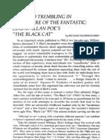 Black Cat -- Poe