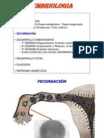 Temas 4-8.- DESARROLLO EMBRIONARIO