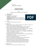 Programa DUI 2013