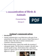 Presentation on animal communication