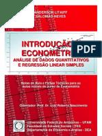 Apostila Econometria Matriz