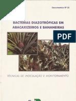 bactérias diazotróficas em abacaxizeiros e bananeiras