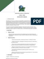 2.-Lengua-y-Literatura.doc