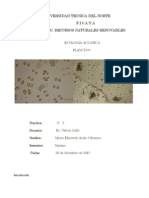 Informe Final Plancton - Ecologia Acuatica (Mayra Ayala Septimo Rnr)