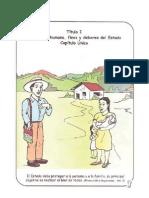 Constitucion Politica de Guatemala Infantil