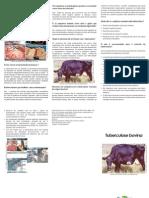 Folder Tuberculosebovina