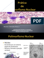 AULA de Polimorfismo Nuclear