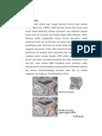 Tutorial Klinik Bedah Urologi - BPH