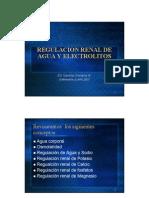 Regulacion Renal de Agua y Electrolitos