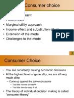 Consumer Choice 3
