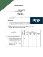 Audit Programs