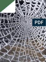 Webs(RoughDraft)