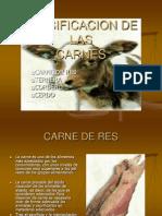 Clasificacion de Las Carnes
