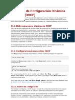 20dhcplinuxasoitson-110108005812-phpapp02
