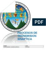 Proceso de Transmision Sinaptica
