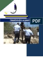 Criminaliteitscijfers 2013 Periode Jan. Tm Jun