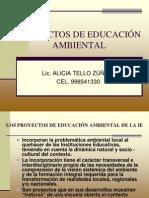 PROYECTOS+DE+EDUCACIÓN+AMBIENTAL-2009