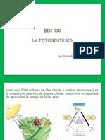 BIO 030 Fotosintesis