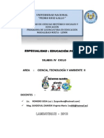 Silabo Final Cta II 2013