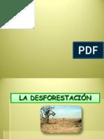 La Desforestación presentacion 1