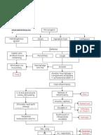 Drug study about ascorbic acid