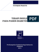 Petunjuk Praktis Terapi Insulin 2011 Launching