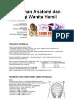 Perubahan Anatomi Dan Fisiologi Wanita Hamil