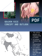 Golden Rice – potential and outlook