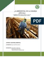 Auditoría avícola (2)