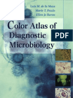 Color Atlas Microbiology Pdf