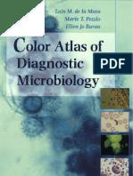 Color Atlas Microbiology Pdf