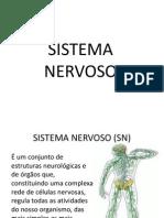 Aula Sistema Nervoso