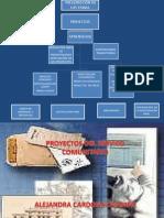 proyectosdelserviciocomunitario-091104090146-phpapp01