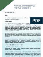 Resolución del Comité Electoral Nacional - SINESSS 2013