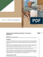 Agrominerais Para o Brasil[1]