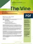 August 2013 Newsletter the Vine
