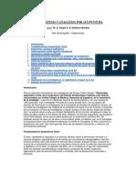 Gutiérrez Morales, Sergio - Curso de Anestesia y Analgesia por Acupuntura.pdf