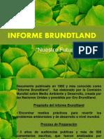 Informe Brundtland.pptx