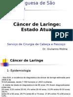 Aula Câncer de Laringe-Dr Giulianno Molina HBP